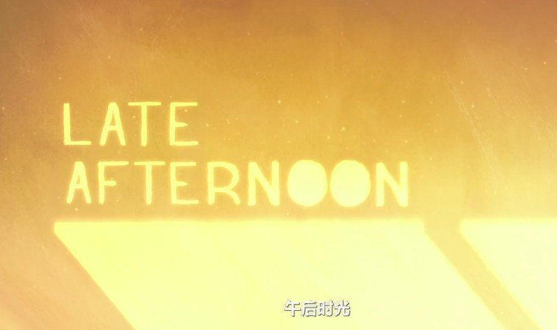 Late afternoon 午后时光
