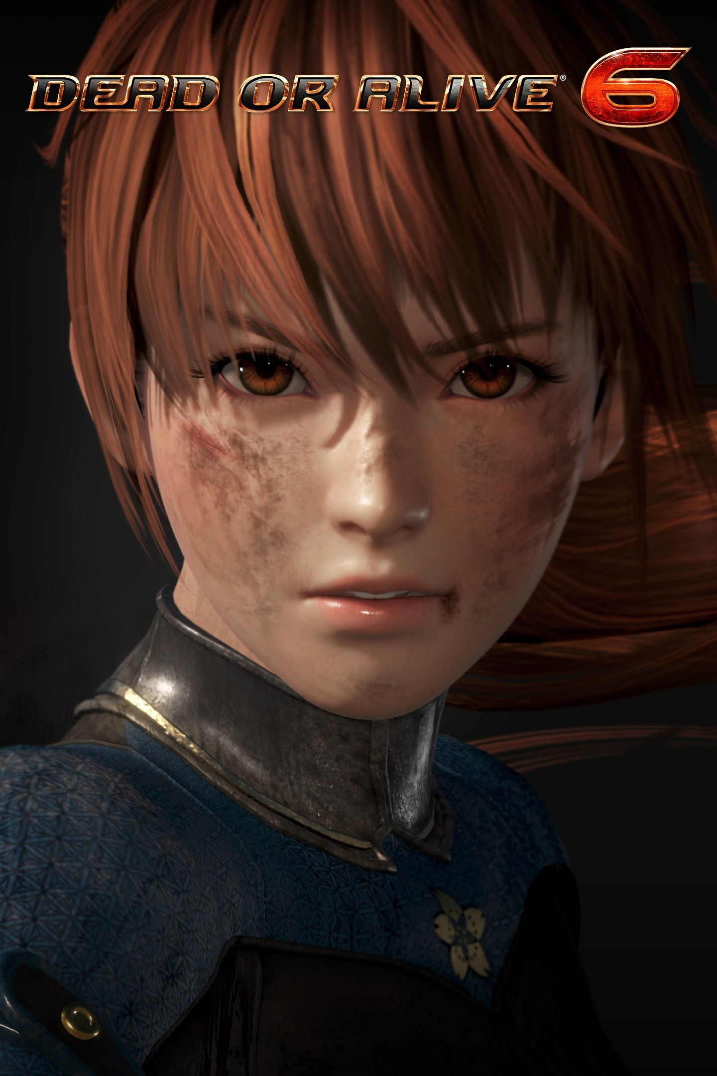 DEAD OR ALIVE 6 死或生6