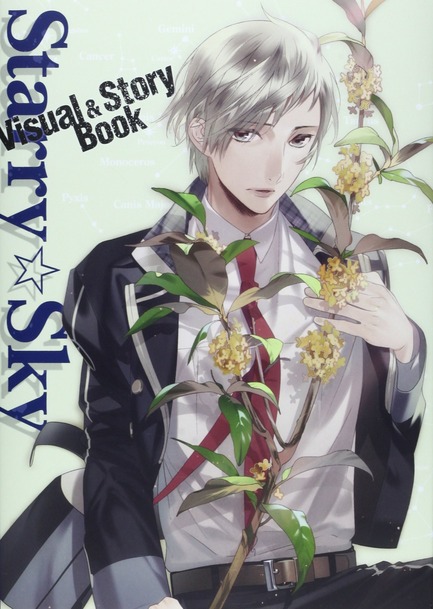 Starry☆Sky Visual&Story Book