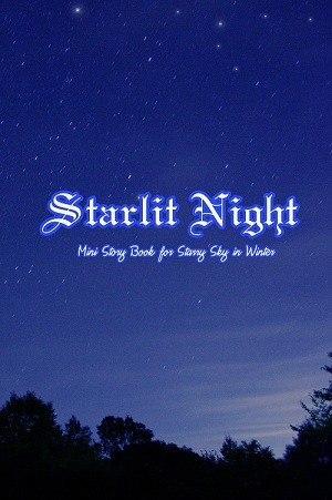 Starry Sky in Winter 小文本《Starlit Night》